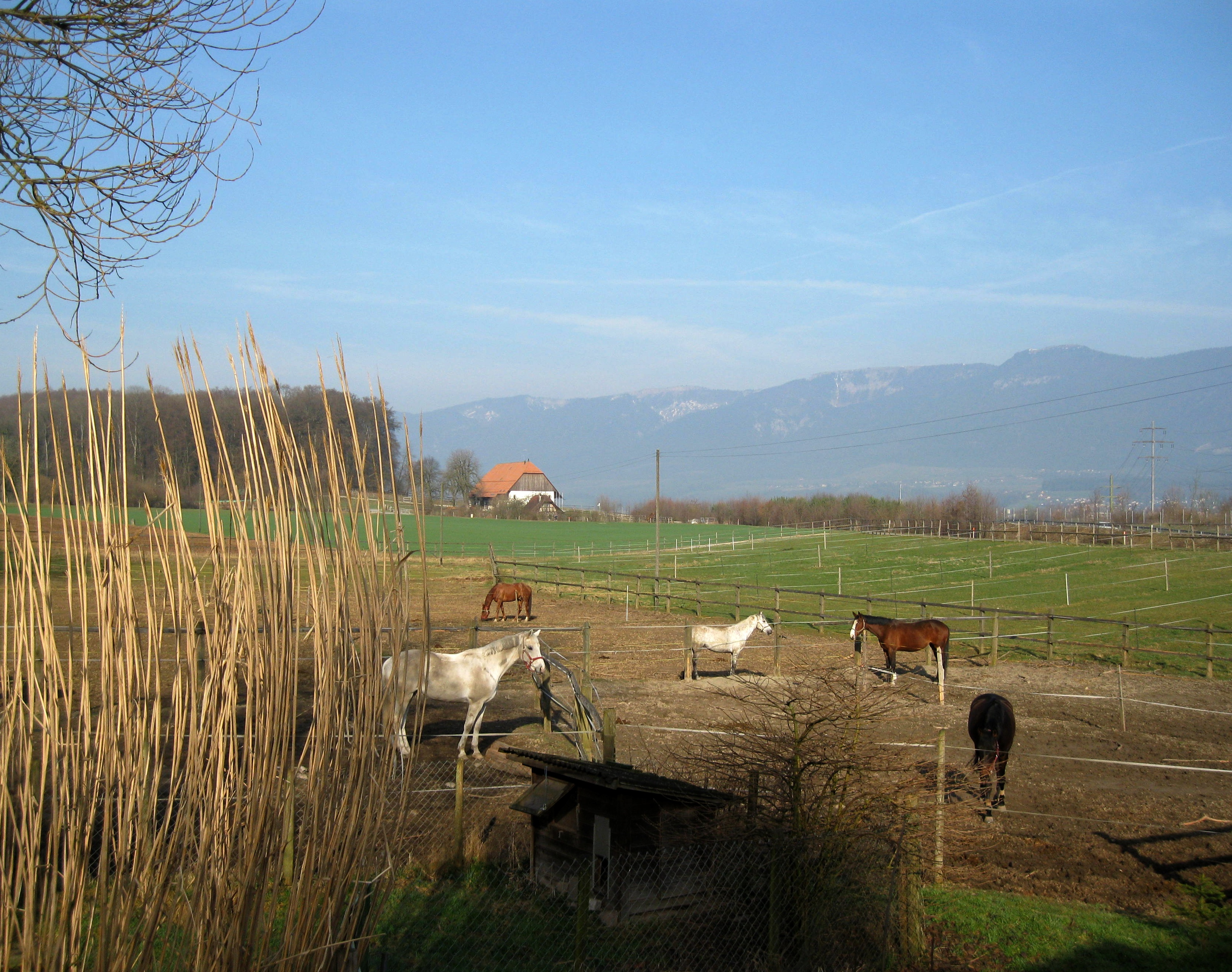 Solothurn, Biberist, Nennigkofen